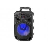 TREVI Cassa Amplificatore XFEST Speaker Altoparlante 15W XF350 con Karaoke