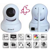 Telecamera IP di Videosorveglianza Wireless da Interno BRAVO RANGER PRO